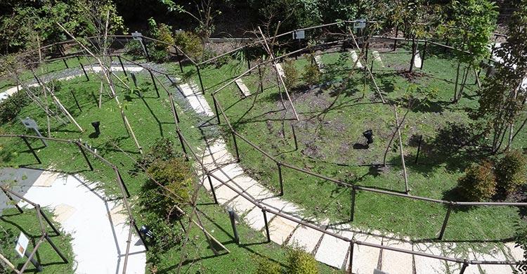 リハビリ庭園の様子